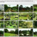 Japanese Music, Zen Music with Traditional Flute, Koto, Shamisen (2014) 720P HD SONGSARA.net