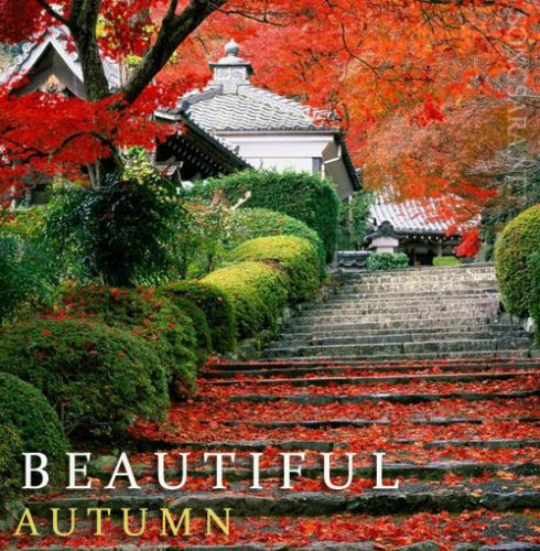 Beautiful-Autumn-HD