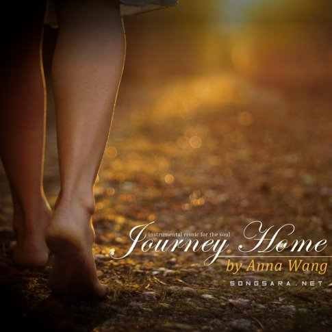 Anna Wang - Journey Home 2014