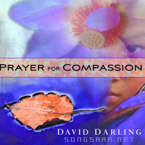 David Darling - Prayer For Compassion (2009)