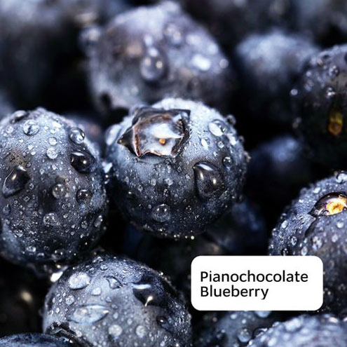 Pianochocolate - Blueberry (2016)