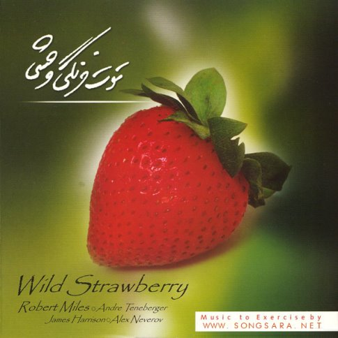 Various Artists - Wild Strawberry (2016) Special Edition