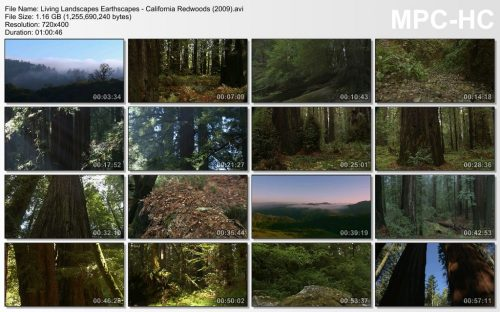 Living Landscapes Earthscapes - California Redwoods (2010)