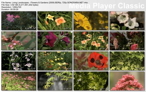 Living Landscapes - Flowers & Gardens (2009) BDRip, 720p