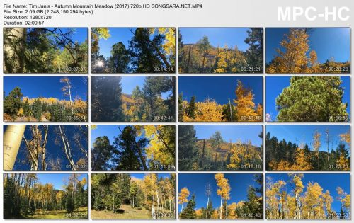 Tim Janis - Autumn Mountain Meadow