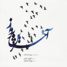 Koorosh Matin - The Last Flight (In Memoriam of Parviz Meshkatian) 2013