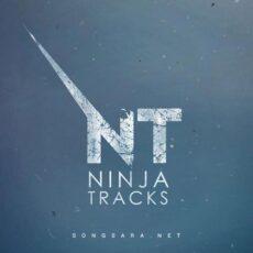 Ninja Tracks - Discography