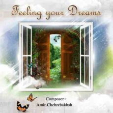 Amir Chehrebakhsh - Feeling Your Dreams