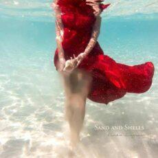 Kendra Logozar - Sand and Shells