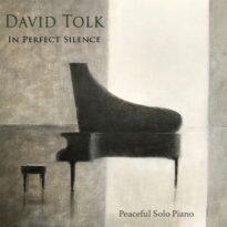 David Tolk - In Perfect Silence