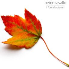 Peter Cavallo - I Found Autumn