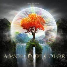 End of Silence - A World of Color