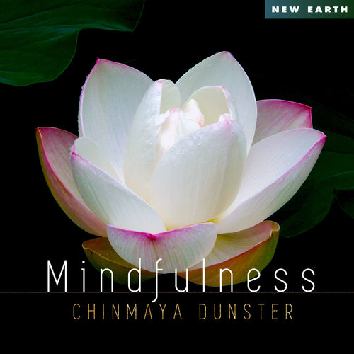 Chinmaya Dunster Mindfulness