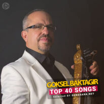 TOP 40 Songs Göksel Baktagir
