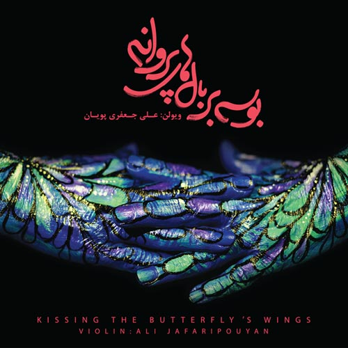 Ali Jafari Pouyan Kissing The Butterfly's Wings