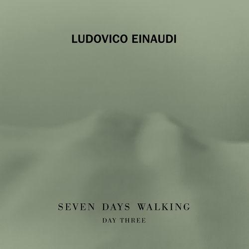 Ludovico Einaudi Fox Tracks (Day 3)