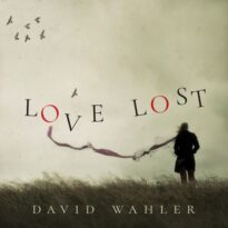 David Wahler Love Lost