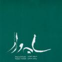 Masoud Shaari, Pejman Hadadi Fleeting Shadow