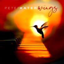 Peter Kater Wings
