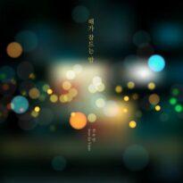 Jeon Su Yeon The Night The Sun Falls Asleep