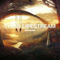 Mitchell Broom Third Lifestream