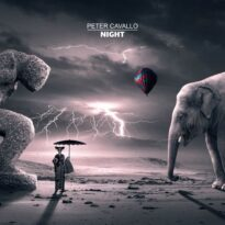 Peter Cavallo Night