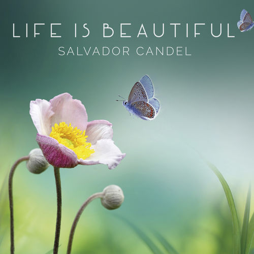 Salvador Candel Life is Beautiful