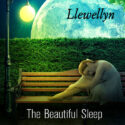 Llewellyn The Beautiful Sleep