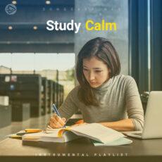 Study Calm (Playlist By SONGSARA.NET)