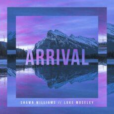 Luke Moseley, Shawn Williams Arrival