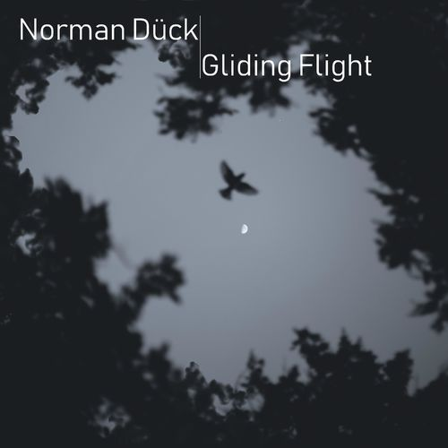 Norman Dück Gliding Flight