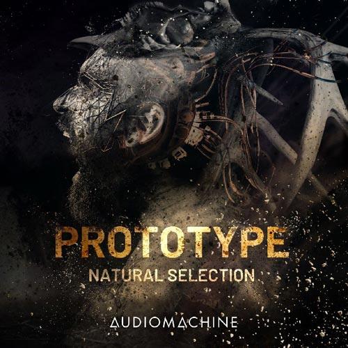 Audiomachine Prototype: Natural Selection