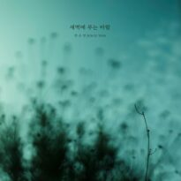 Jeon Su Yeon The Breeze at Dawn