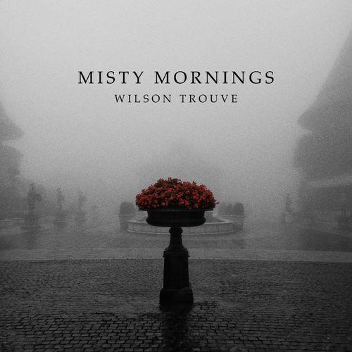 Wilson Trouvé Misty Mornings