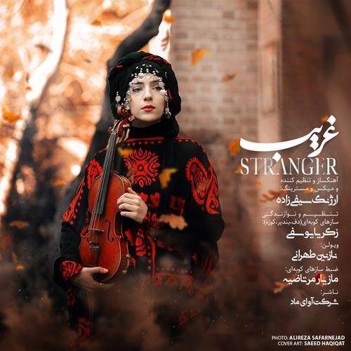 Nazanin Tehrani Stranger