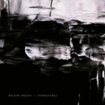 Wilson Trouvé Evanescence