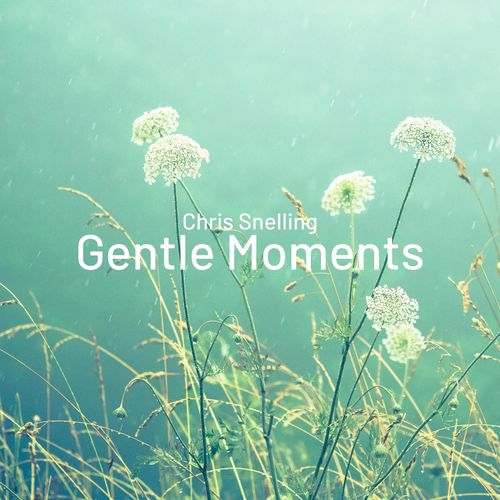 Chris Snelling Gentle Moments