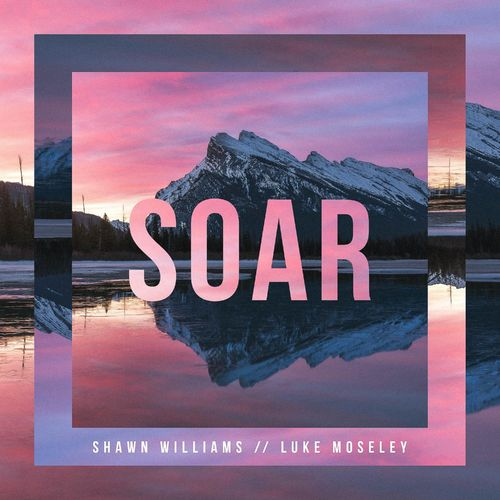 Luke Moseley, Shawn Williams Soar