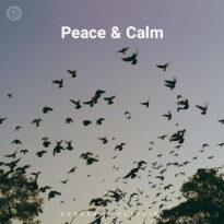 Peace & Calm (Playlist By SONGSARA.NET)