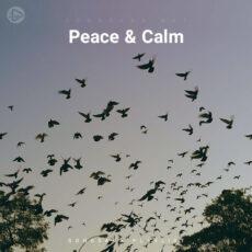 Peace & Calm (Playlist By SONGSARA.NET)