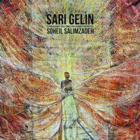 Soheil Salimzadeh Sari Gelin