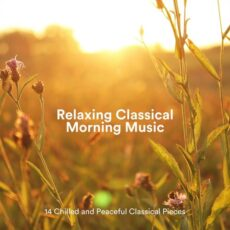 14 Chilled and Peaceful Classical Pieces