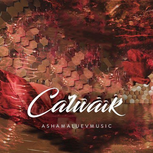AShamaluevMusic Catwalk
