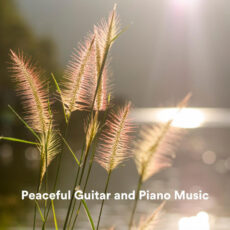 Chris Snelling Peaceful Guitar and Piano Music