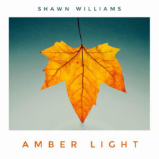 Shawn Williams Amber Light
