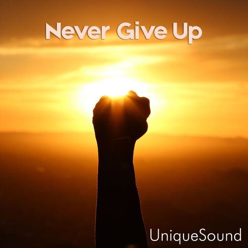 UniqueSound Never Give Up