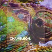 Boris Brejcha Chameleon (Live Stream Part 1)