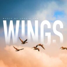 Jessie Yun Wings