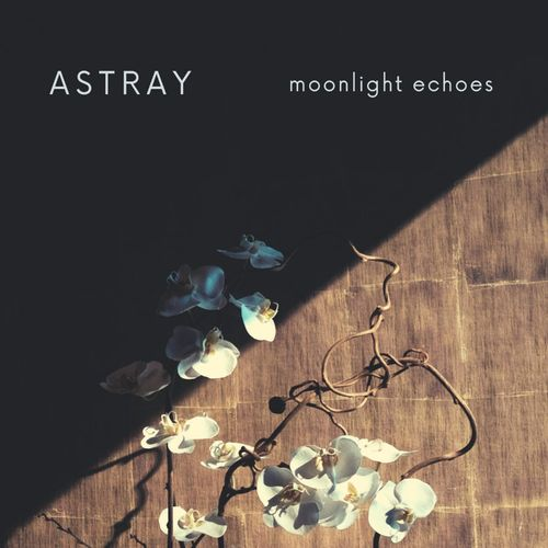 Moonlight Echoes Astray