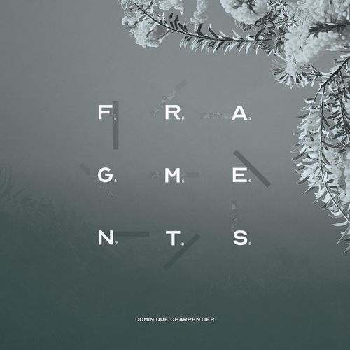 The Piano Lover Fragments